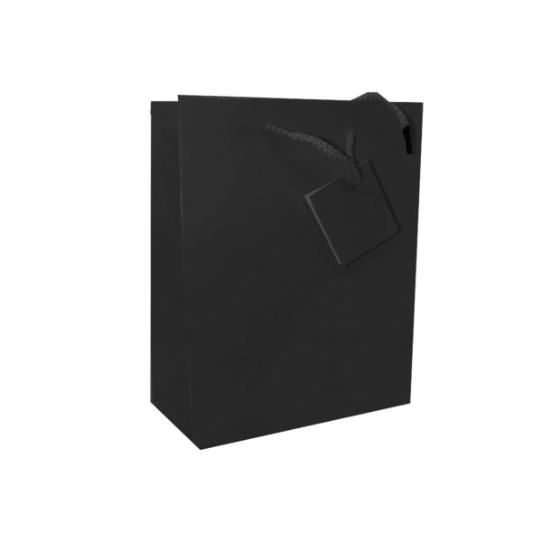PK(20) GIFT BAG 17+8×22 BLACK