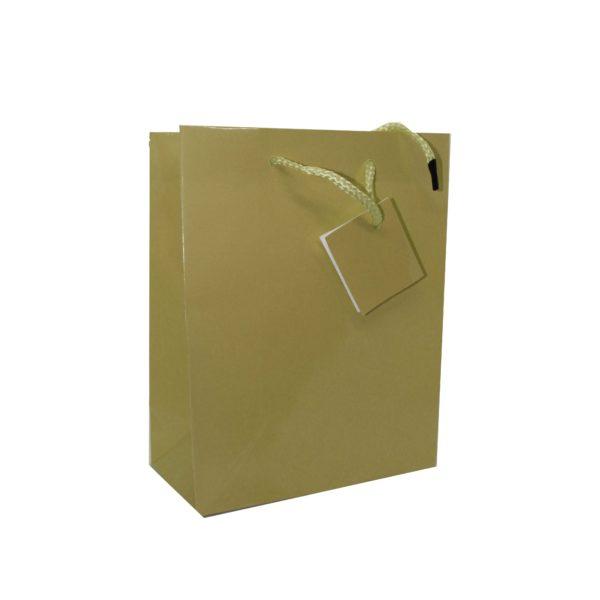 PK(20) GIFT BAG 17+8×22 GOLD
