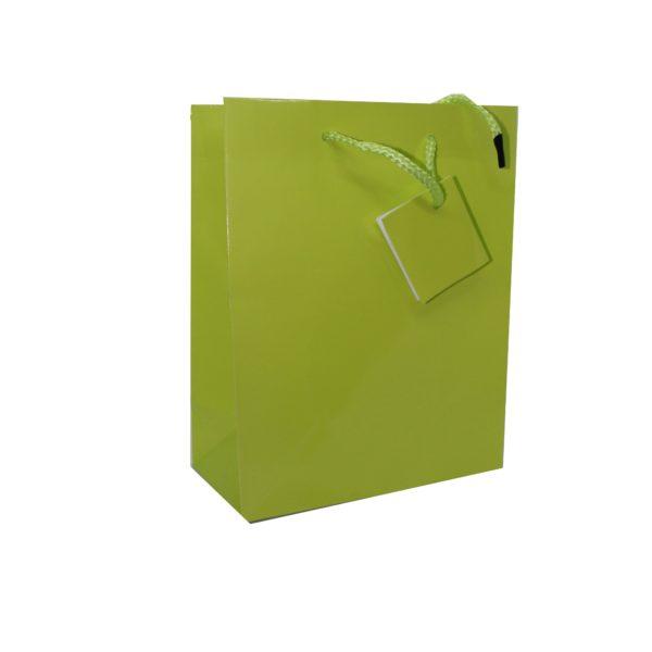 PK(20) GIFT BAG 17+8×22 LIME GREEN