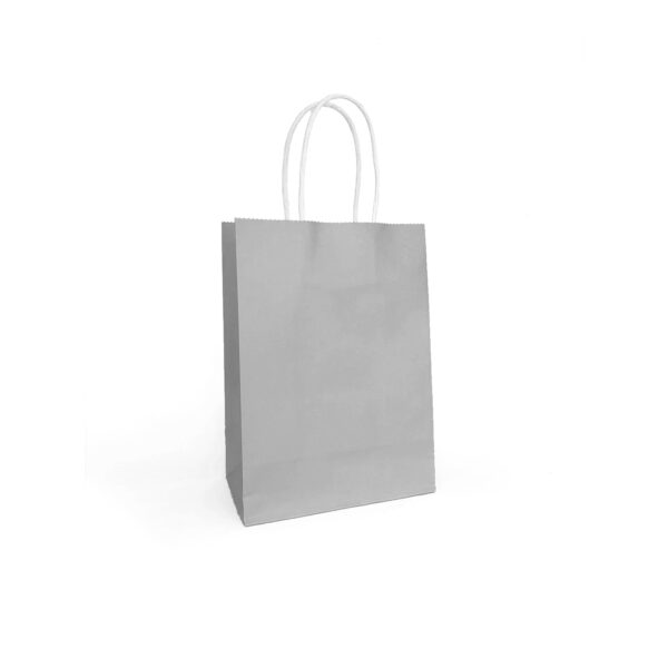 PACK (12) GIFT BAGS PAPER ASSORTED COLOURS 21+11x27cm