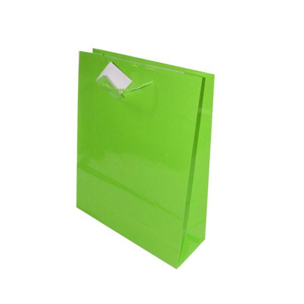 PK(20)GIFT BAGS 26+9X32cm KIWI GREE