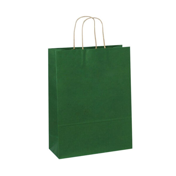 PACK (12) GIFT BAGS PAPER ASSORTED COLOURS 26+12x33cm