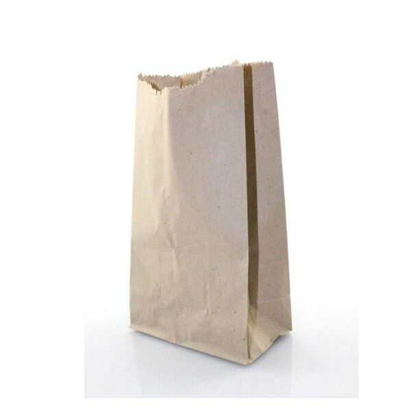 (100) S.O.BROWN BAGS SIZE 3